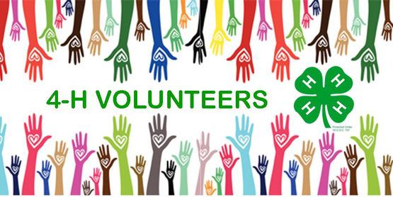 Volunteer-Hands