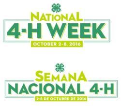 4H Week